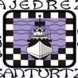 logo santurtzi